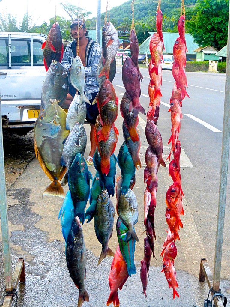 Moorea - July 2014 - Catch Of The Day