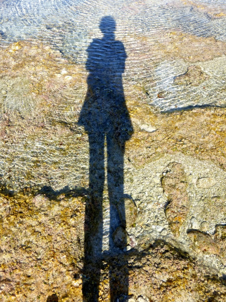 Me And My Shadow On Minerva Reef