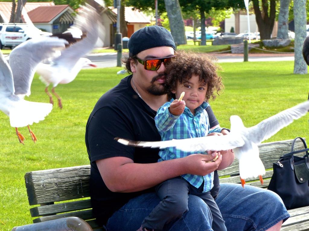 Rotorua - November 2014 - Feeding The Birds (3) _ Copy