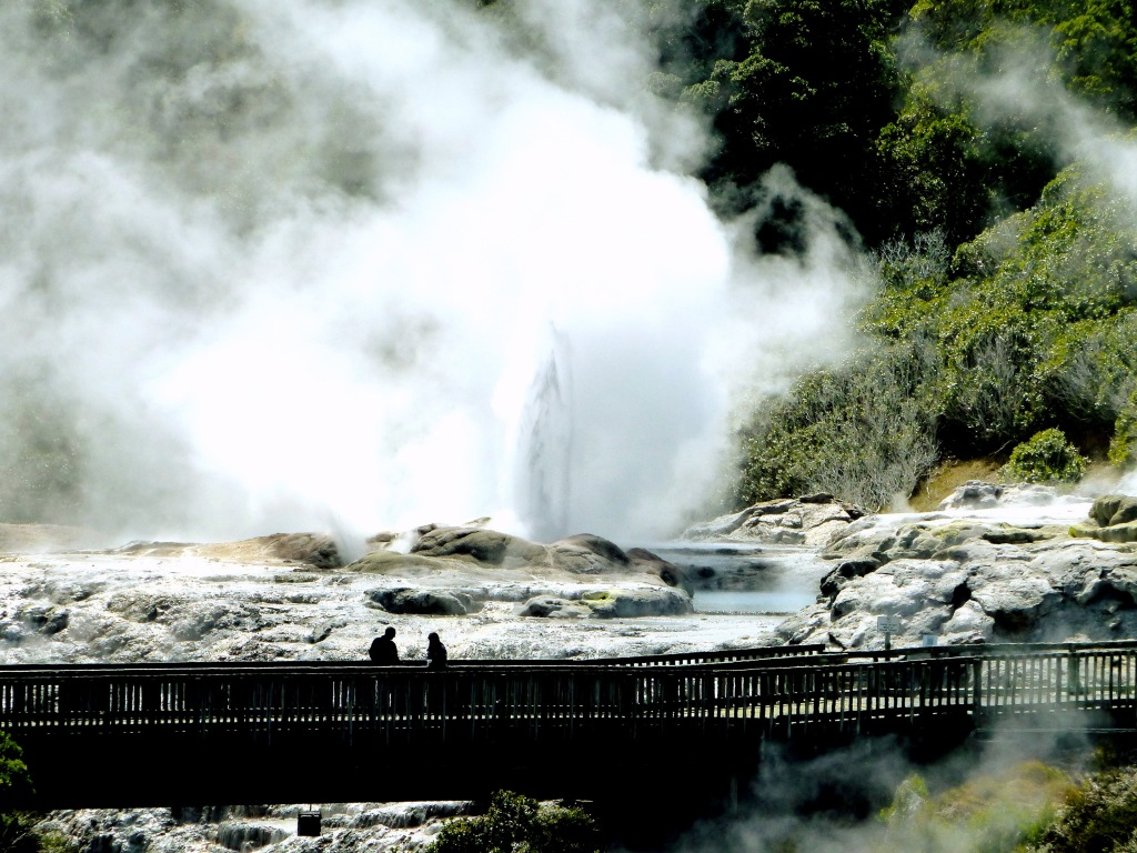 Pohutu Geyser In The Distance