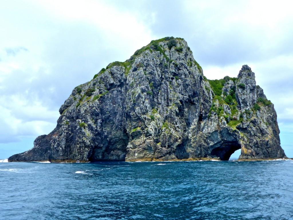 Motu Kokako (Piercy Island)