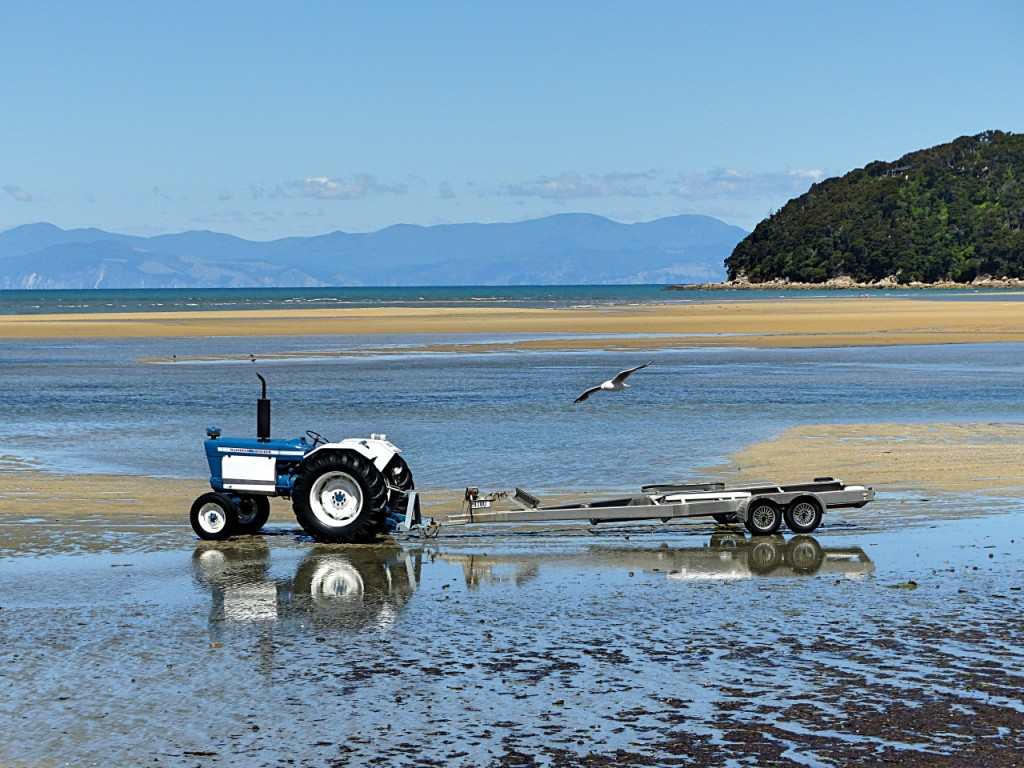 Shores At Abel Tasman