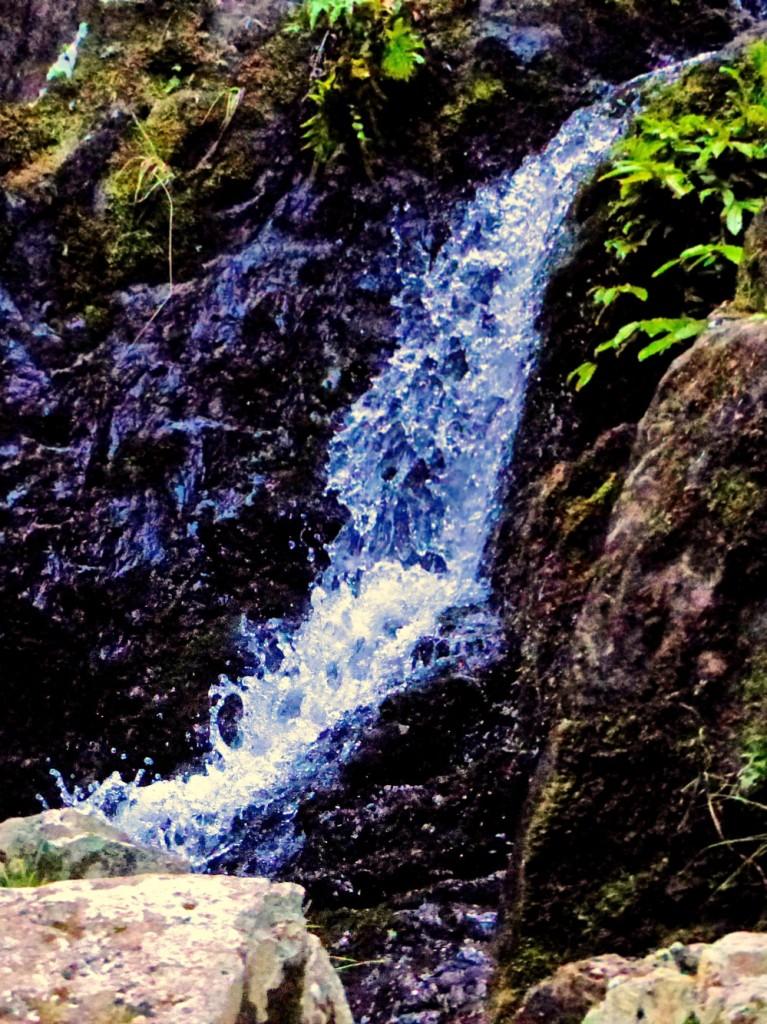 Waterfall At Whangamumu
