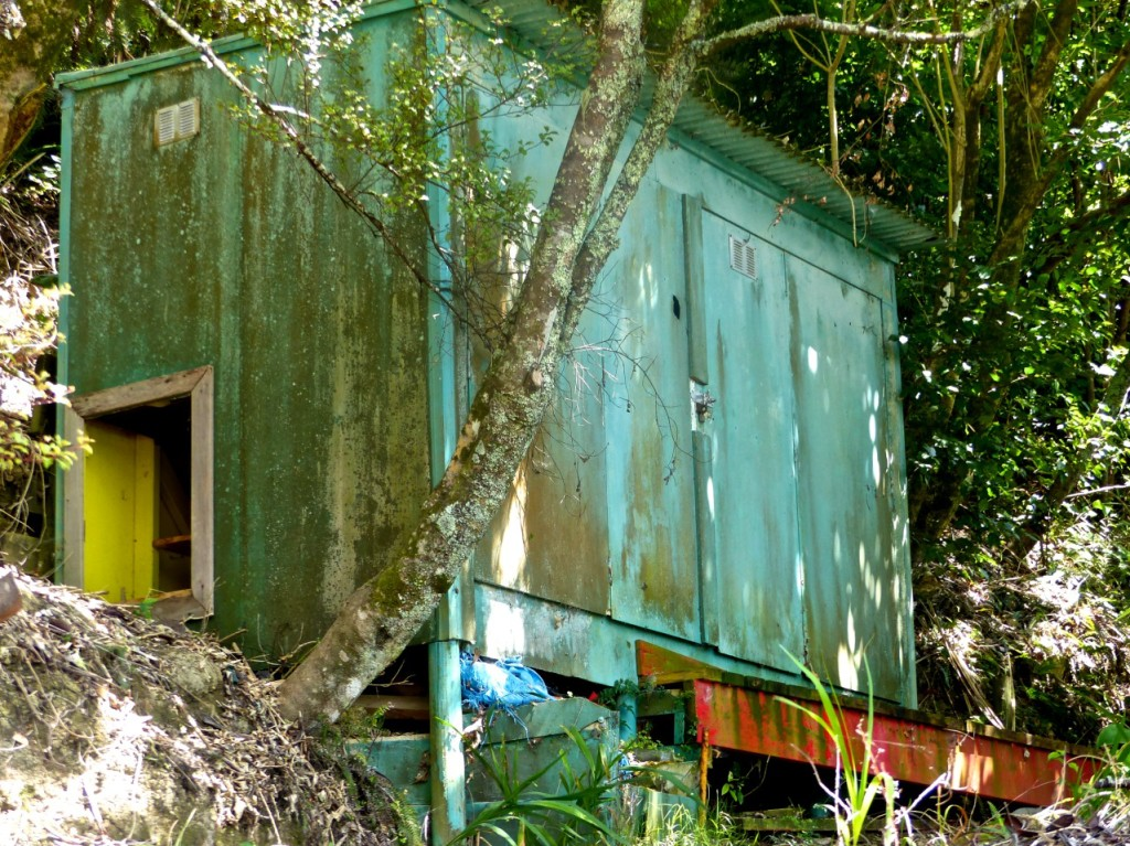 New Zealand - January 2015 - Woodshed