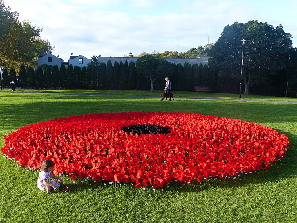 New Zealand - April 2015 - Peace Poppy Project Ponsonby_Copy