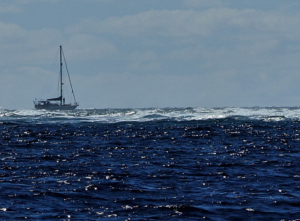 A Boat Entering North Minerva Reef Pass