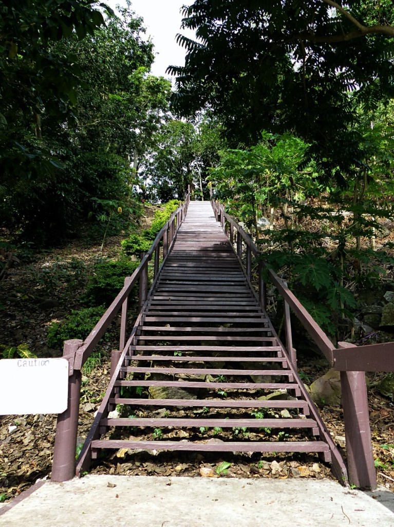 Stairs To Dive Resort