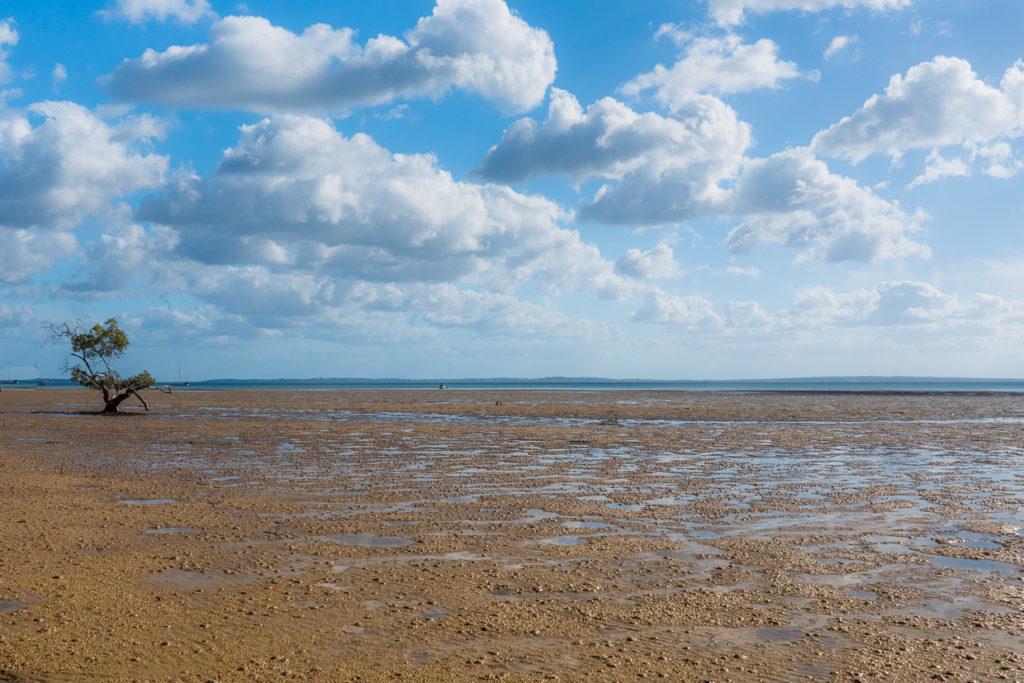Spare Landscape Fraser Island