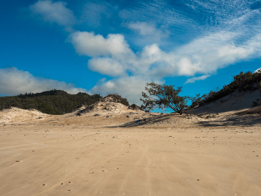 Sand Dunes At Whites Bay