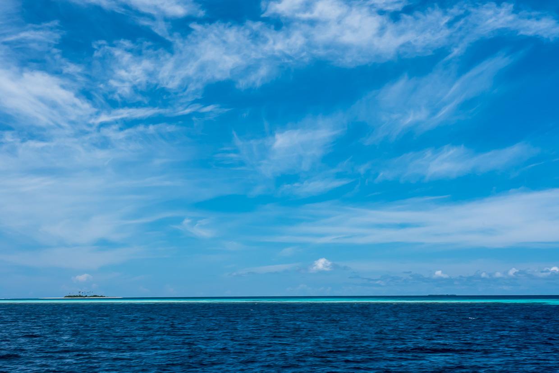 Cool Wallpaper Horse Ocean - Copy-1520549  Image_675414.jpg?w\u003d300